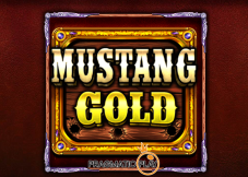 Mustang Gold