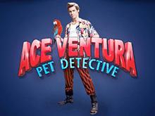 Ace Ventura Slot