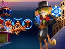 Cat In Vegas Slot